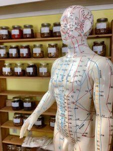 acupunctuur-beeld